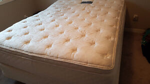 Serta perfect sleeper Queen size mattress, boxspring and frame.