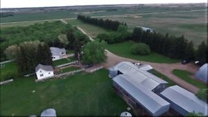 175 Acre Mixed Farm,  Acreage and Investment near Boissevain