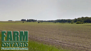 98 Acre Vacant Productive Parcel Near Ethel Bluevale