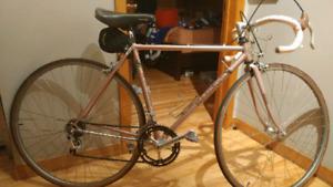 Vélo de route Marinoni fleur de lys