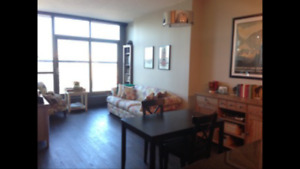 Floor to Ceiling Windows All Around 1-BDRM Walking Dist DT