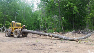 Turn your forest into money. Select timber cutting Firewood and