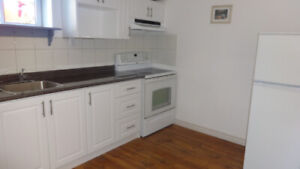 Beautiful 2 Basement Apartment All Inclusive