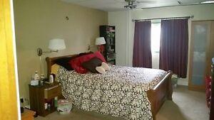200 Main St., Lafleche Moose Jaw Regina Area image 9