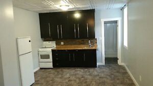 Beautiful 1 bdr apartment suite located in RADVILLE Regina Regina Area image 4