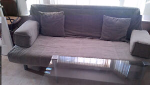 Futon and Coffee Table