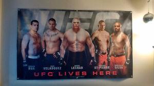 UFC Banner