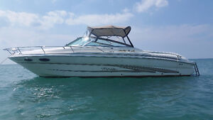 1997 Sea Ray Sun Sport Cuddy - Reduced to Sell