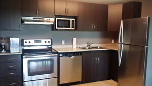 R1 Fanshawe College, Furnished, Pet Friendly Apartment - Sublet London Ontario image 7