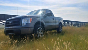 2013 Ford F-150 5.0 4x4