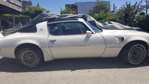 1981 Turbo Trans Am/ fire-bird 4.9L( 46K km)
