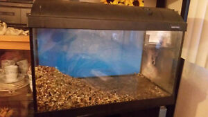 15  gallon tank with mirrored stand Prince George British Columbia image 2