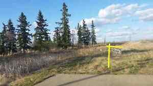 Acreage Land Near Beaumont $169,900