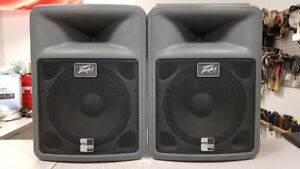 "15"" Peavey DJ Speakers"