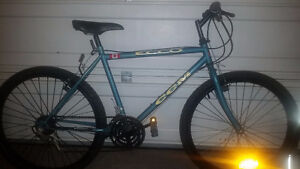 Large mountain bike, great condition!