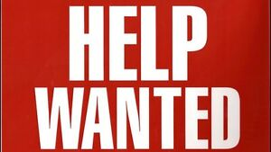 Experienced renovator wanted