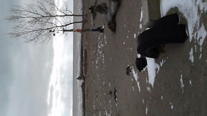 2 winterize lakefront cottages on one property in port Bruce London Ontario image 5