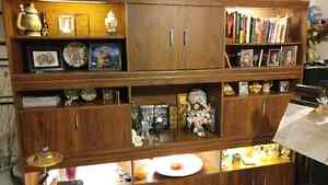 Wall Unit with Mirrors and lights