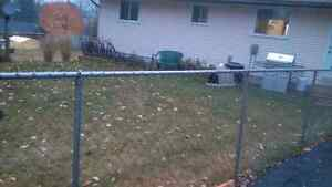 Chainlink Fencing For Sale Kitchener / Waterloo Kitchener Area image 1