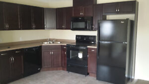 Gorgeous Clareview brand new 2 bedroom condo