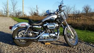 Harley Sportster 100th Year Anniversary Special 1200 Cambridge Kitchener Area image 4
