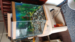 40gl fish tank with accessories 100$