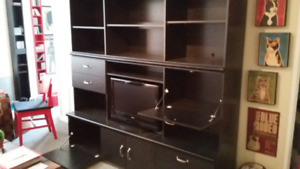 Entertainment Unit with Storage