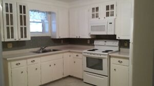 Centrally Located Stratford  One Bed Bedroom, Newly Renovated