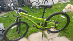 Nakamura Youth Mountain Bike
