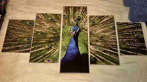 Brand new 5 panel Peacock canvas picture