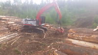 Logging and road building