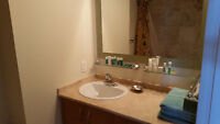 Bargain price downtown executive furnished condo 1 B/R
