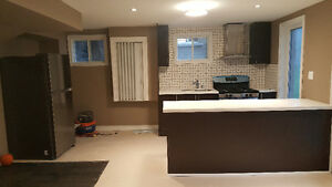 Spacious one bedroom walkout basement apartment for rent in Ajax