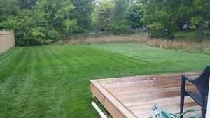 KAWARTHA CREATIONS: Lawn Care / Fall Clean Up Peterborough Peterborough Area image 1