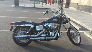 Dyna model solo touring seat