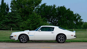 Looking for 1974-1978 Pontiac Trans AM