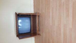 Antique ...electro home...tv