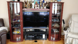 TV / Entertainment Cabinet