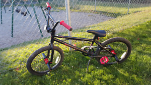 DK bmx from Canadian Tire
