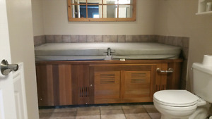 Hydropool H200 self cleaning, 2 person hot tub