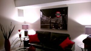 fully furnished and renovated one bedroom apartment Edmonton Edmonton Area image 4
