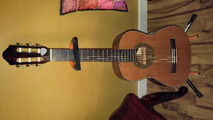 Acoustic Guitar, Case and Stand