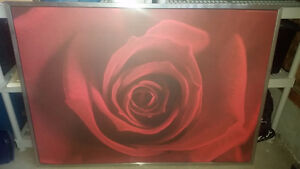 Home Large Wall Rose Picture $25.00