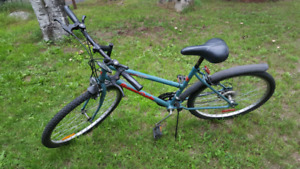 Supercycle bike Medium frame good for back to school student