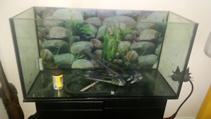 Fish tank for sale , price is firm!!!