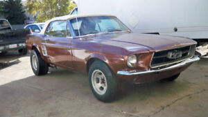 """""""1967 FORD MUSTANG CONVERTIBLE RARE FIND GREAT BUY"""""""