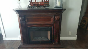 Coleman Electric Fireplace 350$