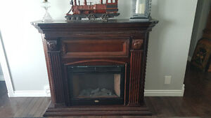 Coleman Electric Fireplace 250$