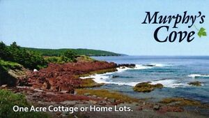 Ocean View Drive - Normans Cove, NL - MLS# 1133604