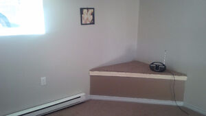 Spacious must see downtown Kitchener basement apartment! Kitchener / Waterloo Kitchener Area image 3